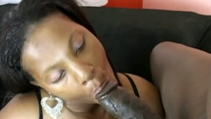 Black Pussy Kat with gigantic melons polishes lucky fellows throbbing ram rod with her lips